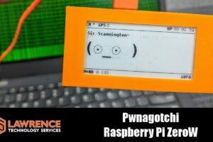 The Pwnagotchi Raspberry Pi ZeroW Project